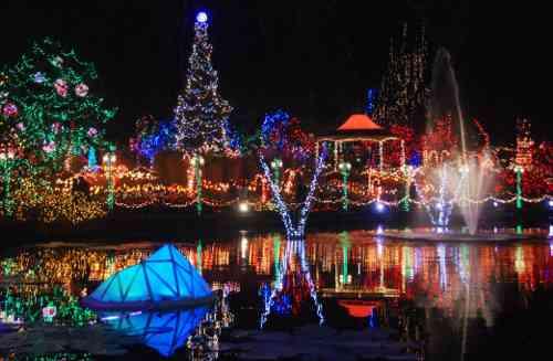 Vancouver Christmas Lights.Christmas Lights At Vandusen Botanical Garden Vancouver S