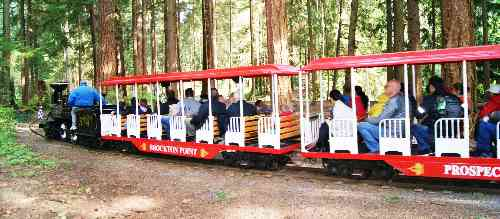 how to go to stanley park