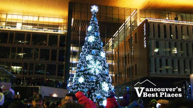 Surrey Tree Lighting At City Hall Vancouver S Best Places